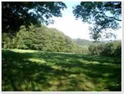 Eschwege Landschaft 4